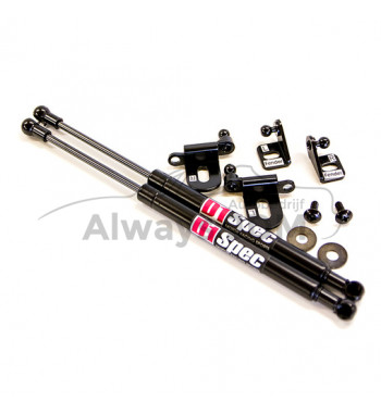 D1 Spec Bonnet dampers Civic